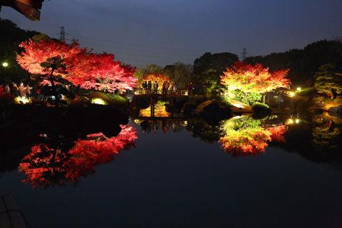大阪_紅葉_大仙公園_ライトアップ