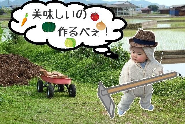 赤ちゃん_芸能界_デビュー