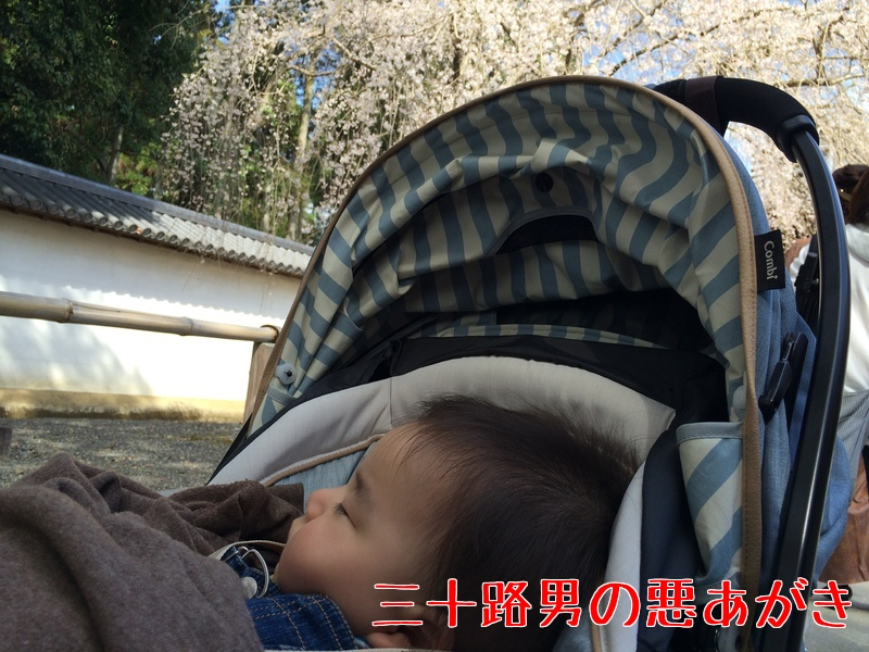 赤ちゃん_ベビーカー_電車