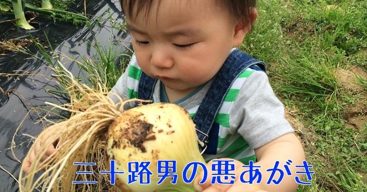 奈良県_信貴山のどか村