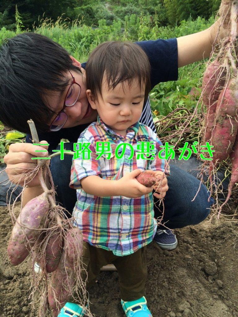 関西_芋掘り_のどか村
