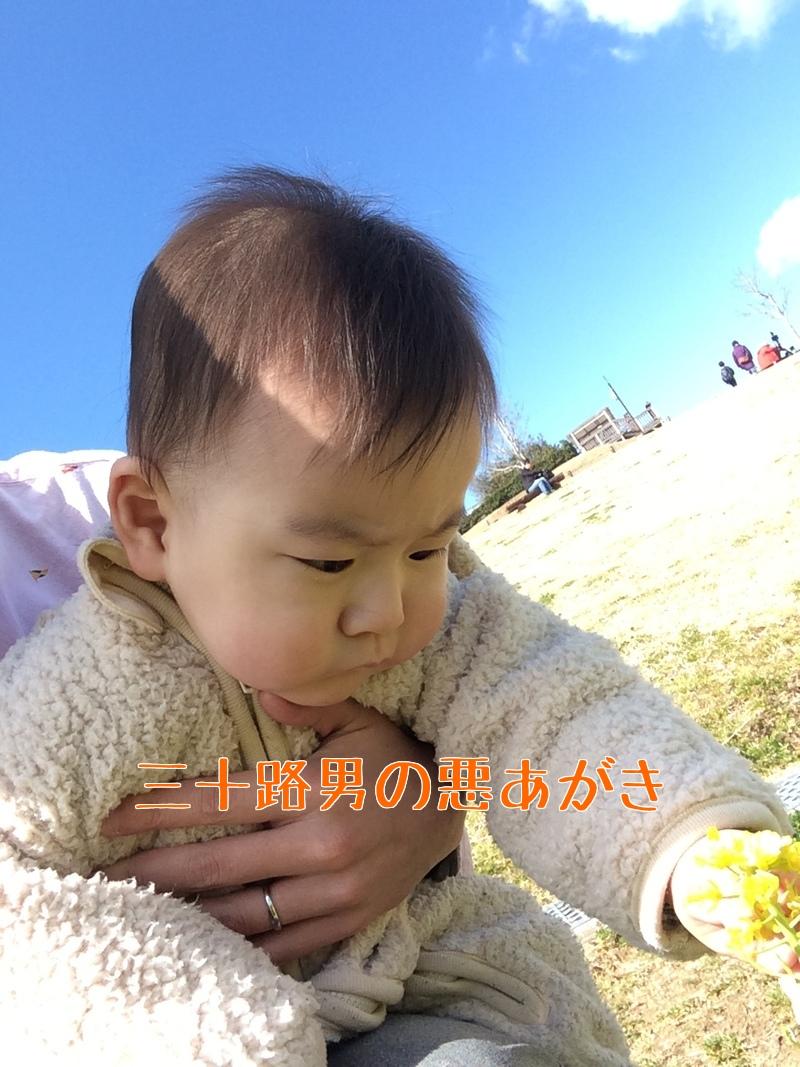 あわじ花さじき_2回目