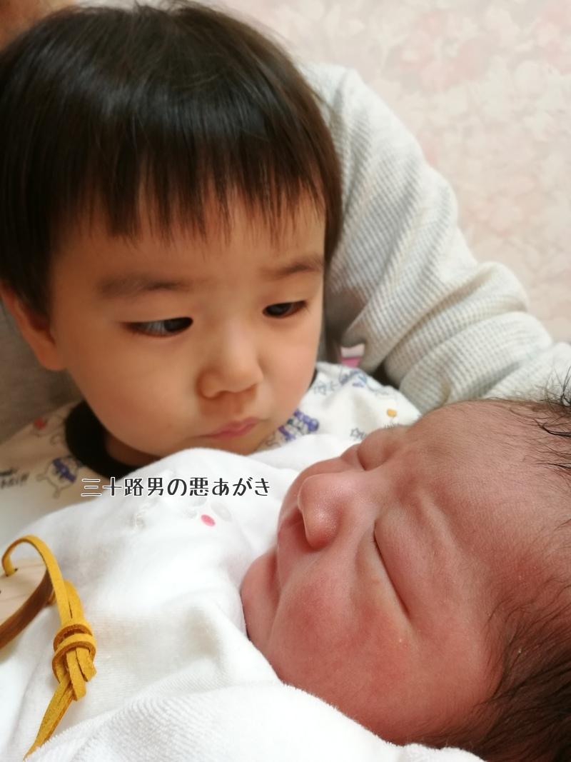 不思議そうに赤ちゃんを眺める上の子