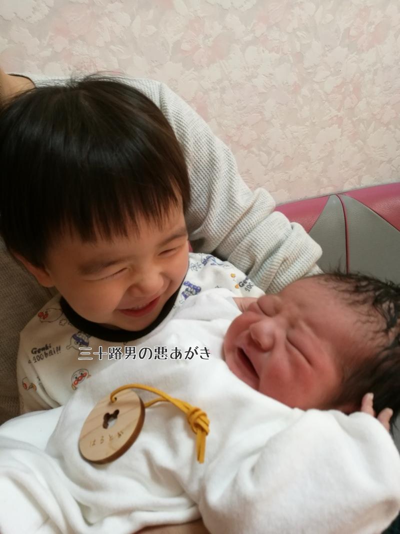 笑顔で赤ちゃんを見る上の子