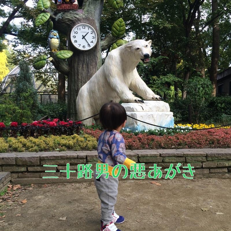 天王寺動物園_シロクマ