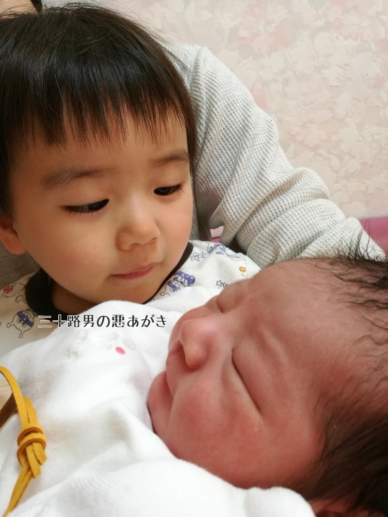 優しい顔で赤ちゃんを見る上の子