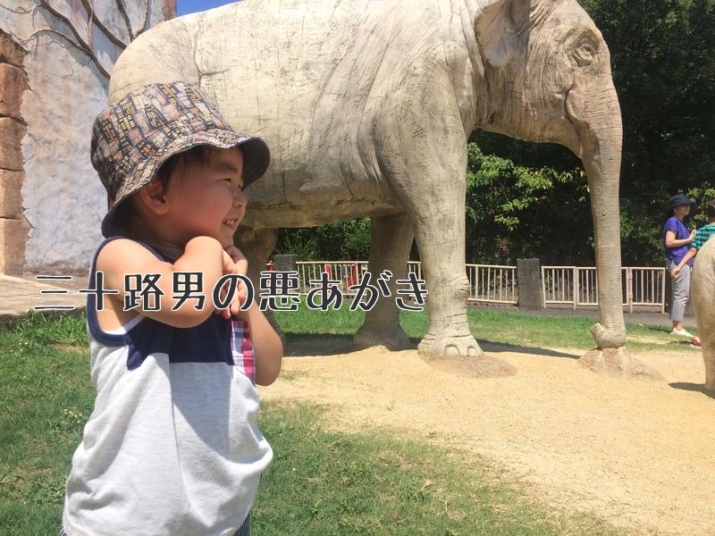 みさき公園_ゾウの石像と息子