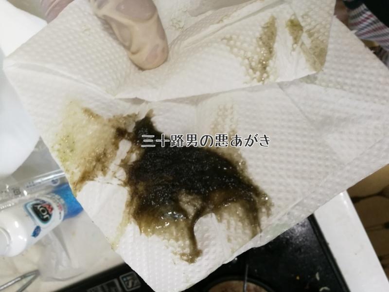 拭き取った換気扇の油汚れ