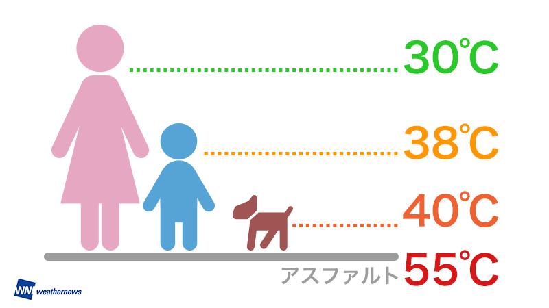 大人と子どもの体感温度